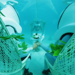 Underwater Weddings in Bora Bora